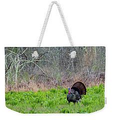 Weekender Tote Bag featuring the photograph Turkey And Cabbage by Bill Wakeley