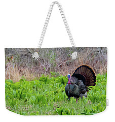 Weekender Tote Bag featuring the photograph Turkey And Cabbage Square by Bill Wakeley