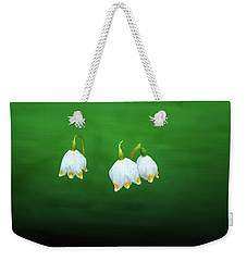 Weekender Tote Bag featuring the photograph Turkey-eggs On Green #g2 by Leif Sohlman