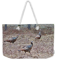 Weekender Tote Bag featuring the photograph Turkey Trio 1153 by Michael Peychich