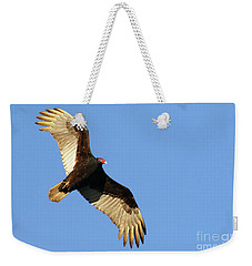 Turkey Vulture Weekender Tote Bag by Debbie Stahre