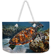 Weekender Tote Bag featuring the photograph Turtle And Shark Swimming At Ocean Reef Park On Singer Island Florida by Justin Kelefas