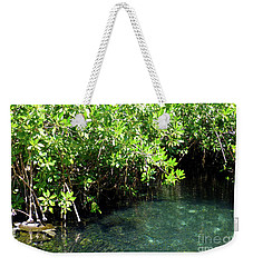 Weekender Tote Bag featuring the photograph Turtle Swim by Francesca Mackenney