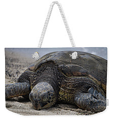 Weekender Tote Bag featuring the photograph Turtle Up Close by Pamela Walton