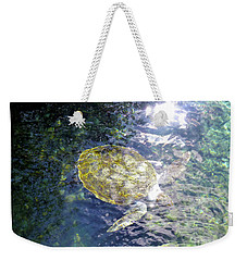 Weekender Tote Bag featuring the photograph Turtle Water Glide by Francesca Mackenney