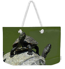 Turtles At A Temple In Narita, Japan Weekender Tote Bag