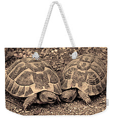 Weekender Tote Bag featuring the photograph Turtles Pair by Gina Dsgn