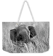 Tusker In The Grass Weekender Tote Bag by Pravine Chester