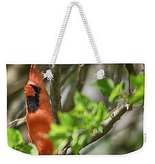 Tweeting Weekender Tote Bag