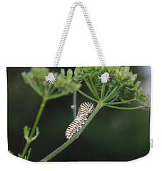 Twilight Caterpillar Weekender Tote Bag
