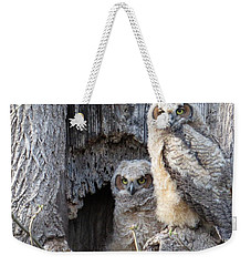 Twin Owls Weekender Tote Bag by Jeanette Oberholtzer
