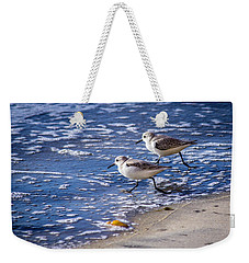 Twin Plovers Weekender Tote Bag