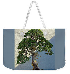 Weekender Tote Bag featuring the photograph Twisted by Brenda Pressnall