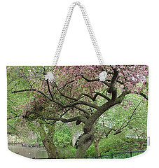 Twisted Cherry Tree In Central Park Weekender Tote Bag by Margaret Bobb