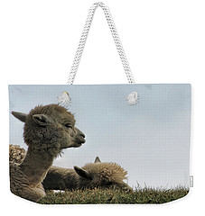 Two Alpaca Weekender Tote Bag