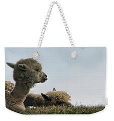 Two Alpaca Weekender Tote Bag