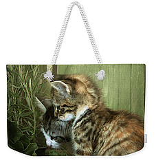 Two Cute Kittens Weekender Tote Bag