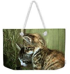 Two Cute Kittens Weekender Tote Bag