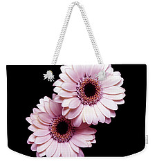 Two Gerberas On Black Weekender Tote Bag