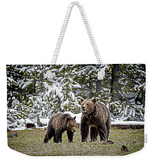 Two Grizzly Bears Weekender Tote Bag