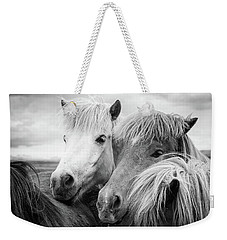 Two Icelandic Horses Black And White Weekender Tote Bag