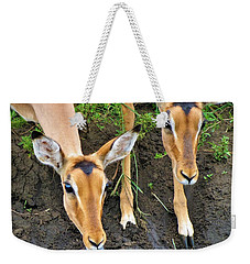 Two Impala Weekender Tote Bag