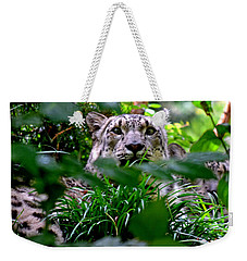 Two Leopards Weekender Tote Bag by David Gilbert