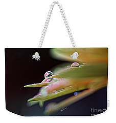 Weekender Tote Bag featuring the photograph Two Little Jewel  by Yumi Johnson