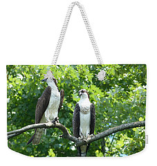 Two On A Limb - Osprey Weekender Tote Bag by Donald C Morgan