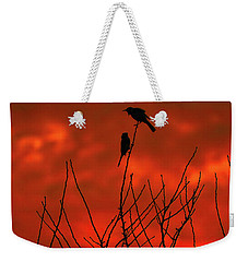Weekender Tote Bag featuring the photograph Two On A Twig by Mark Blauhoefer