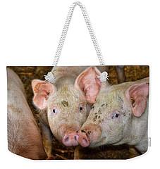 Two Pigs Weekender Tote Bag