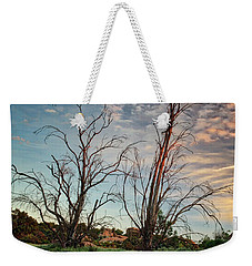 Two Sentinels Weekender Tote Bag by Endre Balogh