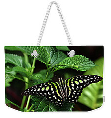 Two Tailed Jay Butterflies- Graphium Agamemnon Weekender Tote Bag