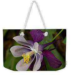Weekender Tote Bag featuring the photograph Two Toned Columbine by Jean Noren