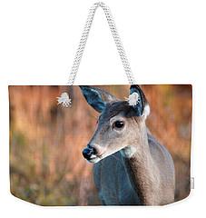 Tzavaot Weekender Tote Bag