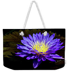 Weekender Tote Bag featuring the photograph Ultra Violet Tropical Waterlily by Julie Palencia