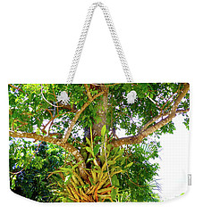 Weekender Tote Bag featuring the photograph Under A Tropical Tree M by Francesca Mackenney