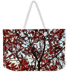 Under Fire Trees Weekender Tote Bag by Danielle R T Haney