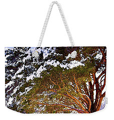 Under Light Weekender Tote Bag