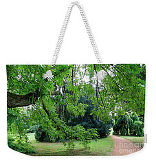 Weekender Tote Bag featuring the photograph Under The Branches Of A Large Tree by Michal Boubin