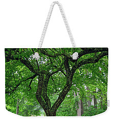 Weekender Tote Bag featuring the photograph Under The Shade Tree by Tikvah's Hope