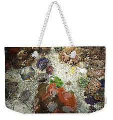 Weekender Tote Bag featuring the photograph Under Water Life by Carol Lynn Coronios