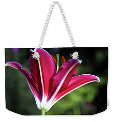Underside Of Asiatic Tiger Lily 1653 H_2 Weekender Tote Bag