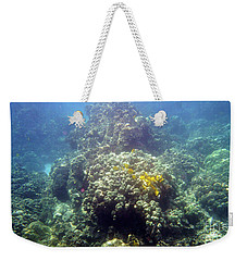 Underwater World Weekender Tote Bag by Karen Nicholson