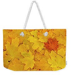 Weekender Tote Bag featuring the photograph Understory by Tony Beck