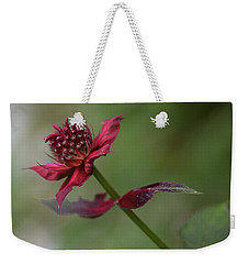 Weekender Tote Bag featuring the photograph Bee Balm by Ben Shields