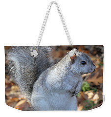 Weekender Tote Bag featuring the photograph Unusual White And Gray Squirrel by Doris Potter