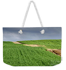 Weekender Tote Bag featuring the photograph Up And Down On The Way Up by Arik Baltinester