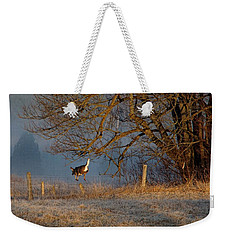 Up And Over Weekender Tote Bag