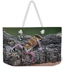 Weekender Tote Bag featuring the photograph Up And Over - Gecko by Nikolyn McDonald